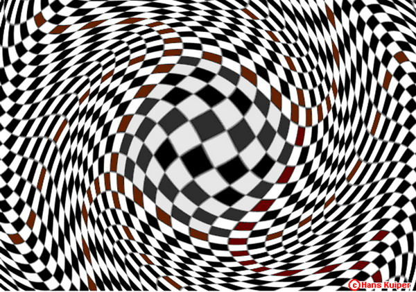optical illusions essay